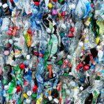 Bottiglie di plastica addio: confezioni bio, dal mais all'alga rossa