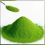L'Alga Clorella elimina i metalli pesanti