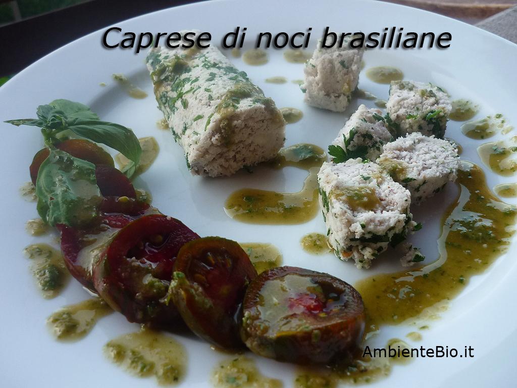 Le propriet delle noci del brasile ambiente bio for Pianta di noci