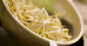 La carica energetica dai germogli di soia