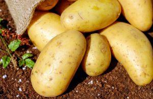 La top ten degli alimenti che contengono potassio e perché consumarli