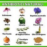 Antibiotici naturali: come sceglierli a seconda del problema