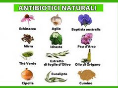 antibiotico naturale