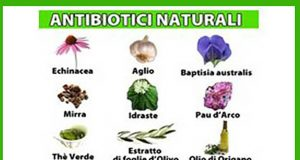 antibiotico naturale