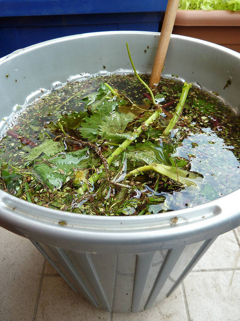 Concime naturale per orto latest concimi naturali come for Concime per gerani fatto in casa