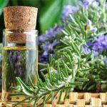 Olio essenziale di rosmarino: come migliorare la memoria a breve e a lungo termine