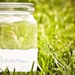 Come trasformare un barattolo di vetro in un terrario