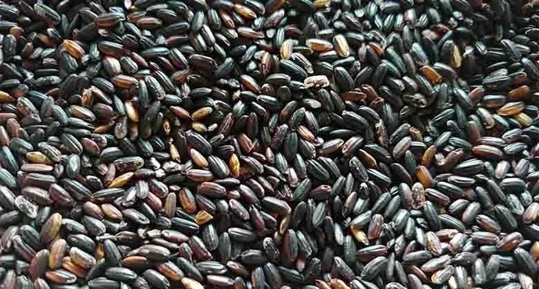 cereali integrali benefici grasso addominale