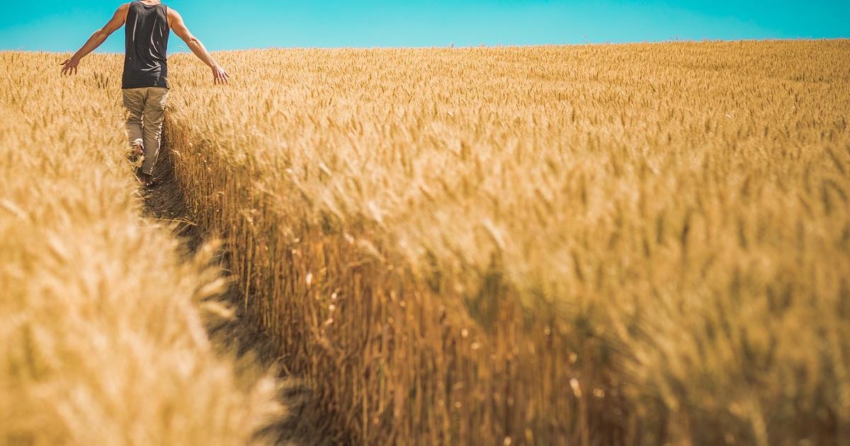 L'Europa sta esaurendo il cibo?