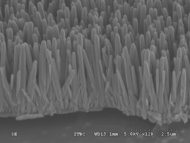 nanotubi verticali