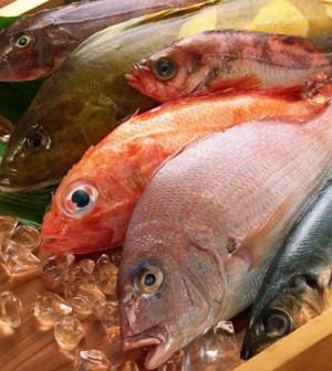 pesce_fresco_mercato-622x466