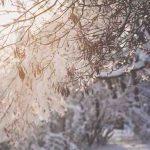 Geloni: 10 metodi naturali per curarli e guarire