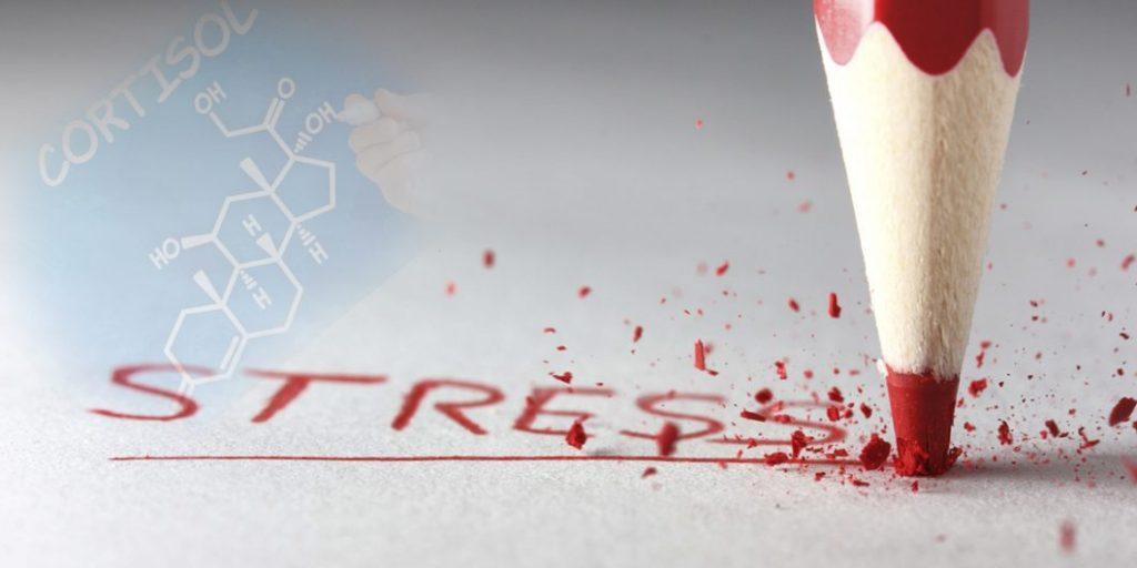 cortisolo alto ormone dello stress