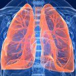Salute dei polmoni: scegliamo i cibi giusti