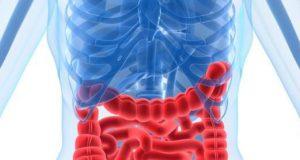 parassiti intestinali