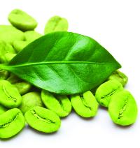 Green Coffee pic 1