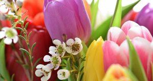 Come essiccare i fiori e far vivere i ricordi più a lungi