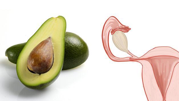 avocado_utero