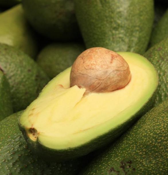 Frutti esotici e sostenibilit i problemi legati al for Avocado coltivazione