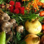 Frutta e verdura biologica: più sana e con meno metalli pesanti. La ricerca