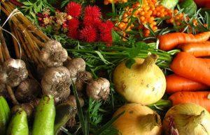 Frutta e verdura biologica più sane di quelle convenzionali