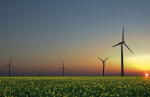 Futuro rinnovabile, quale scenario per il 2050
