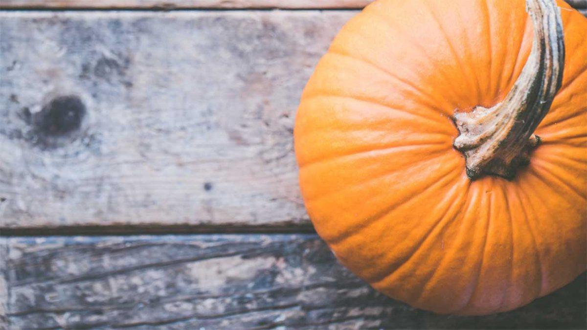 zucca spesa di ottobre