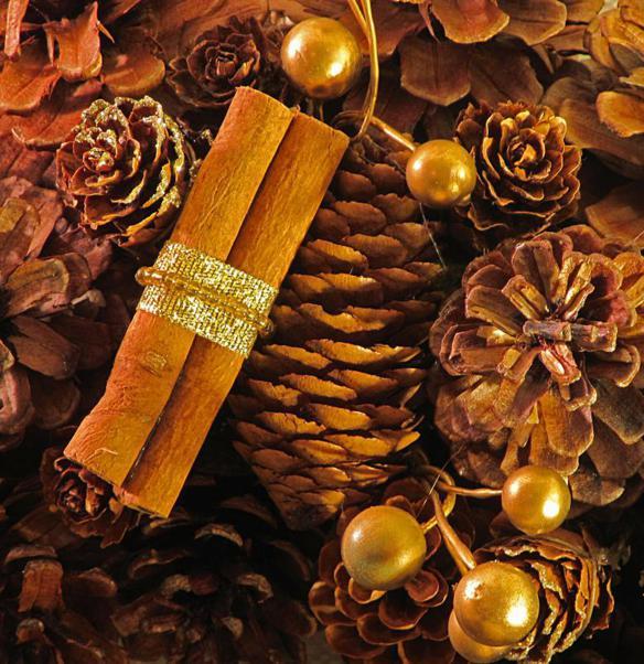 decorazioni natalizie fai da te con i bastoncini di cannella