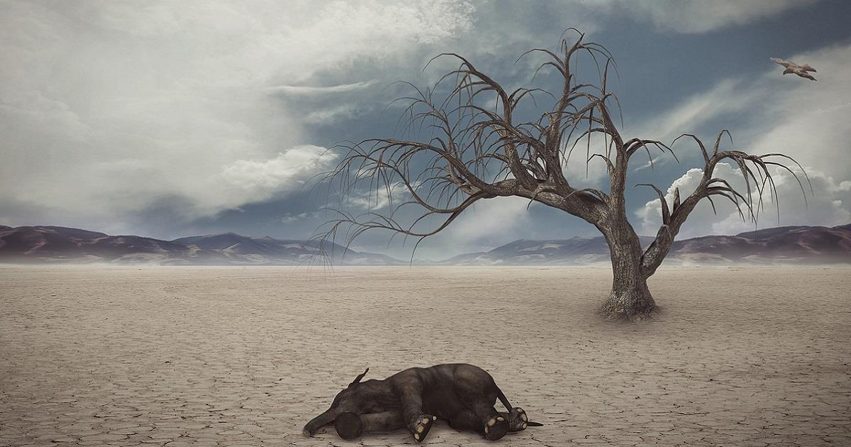 Sopravvivenza del pianeta, limiti e rischi