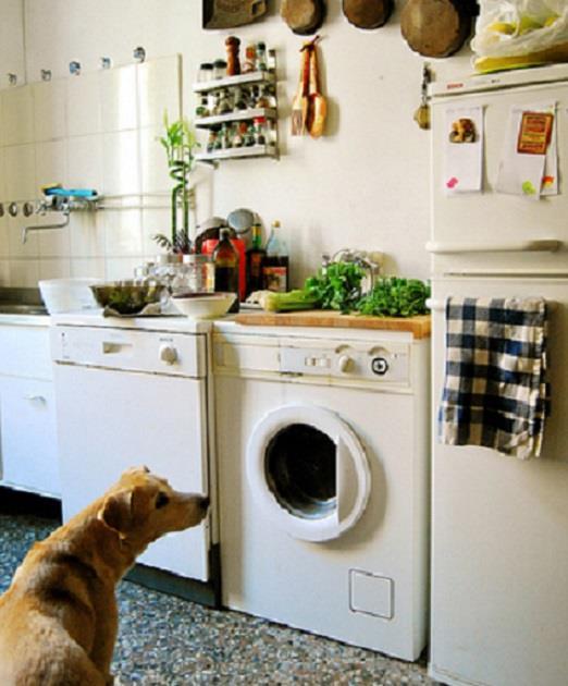 Wwf gli eco consigli per gestire al meglio i consumi in - Cucina induzione consumi ...