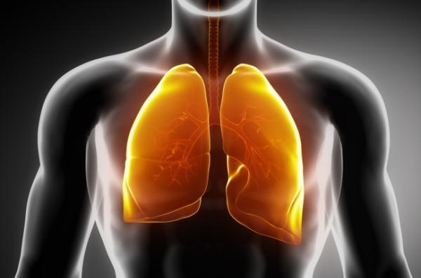salute polmoni