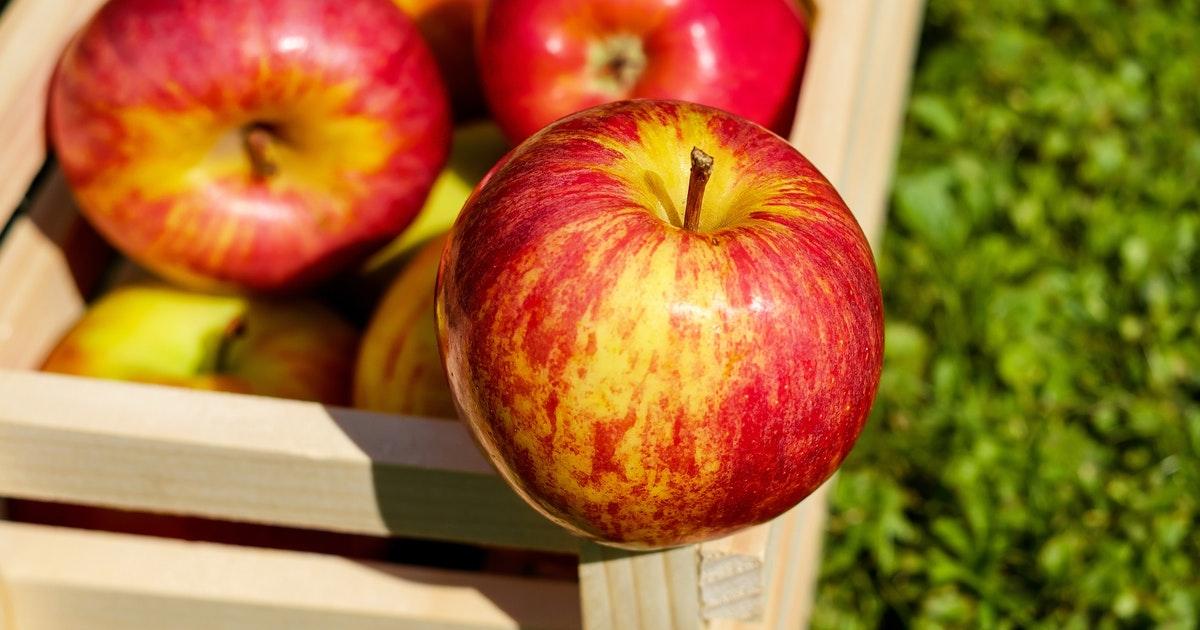 Una mela biologica cerata? No, solo una bufala...