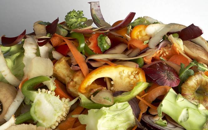 biomassa_scarti alimenti