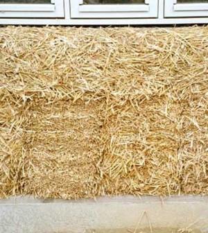 Case di paglia autocostruite quando bioedilizia significa for Piani di casa di balle di paglia di struttura in legno