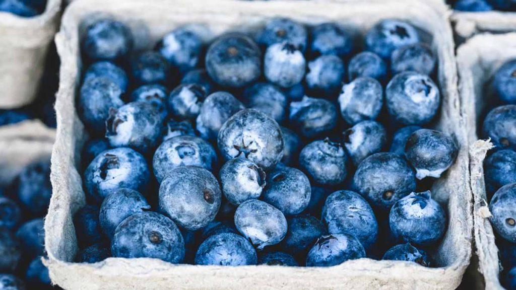 mirtilli superfood antiossidante