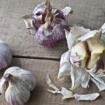 L' aglio previene il cancro e distrugge le infezioni. Perché i medici non lo prescrivono?