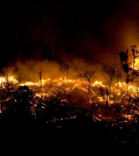 brasile, incendi