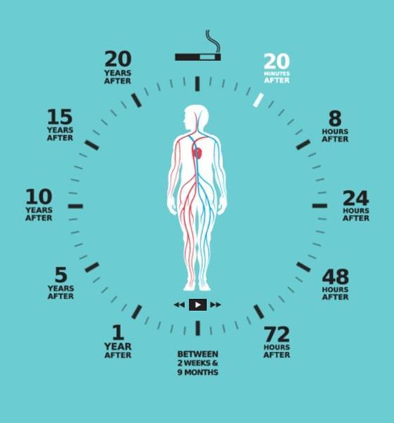 infografica, smettere di fumare