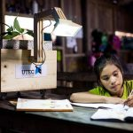 Lampade alimentate da piante e batteri per fare studiare i bambini in Amazzonia