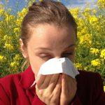 Rinite allergica: dal Malabar la pianta che risolverà il vostro problema