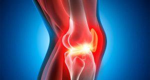 come rigenerare la cartilagine
