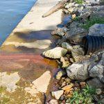 Italia: in 8 mesi 947 reati ambientali