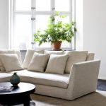 Feng Shui: come arredare casa e vivere meglio
