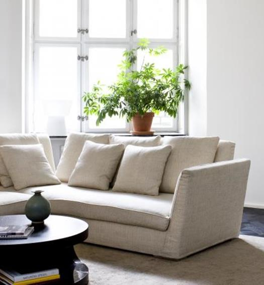 Feng shui come arredare casa e vivere meglio ambiente bio for Feng shui arredamento