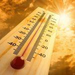 Caldo estivo: 10 mosse per affrontarlo meglio