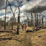 Perù dichiara lo stato di emergenza: indigeni avvelenati da mercurio