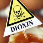 Diossina e alimenti: quali i livelli di rischio?