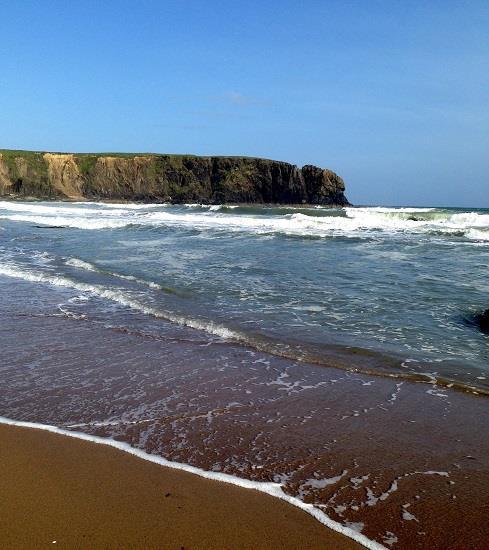 Il riscaldamento globale aumenta la salinità delle spiagge. Con conseguenze gravi per fauna e falde acquifere