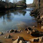 Le anfetamine danneggiano l'ecosistema dei fiumi