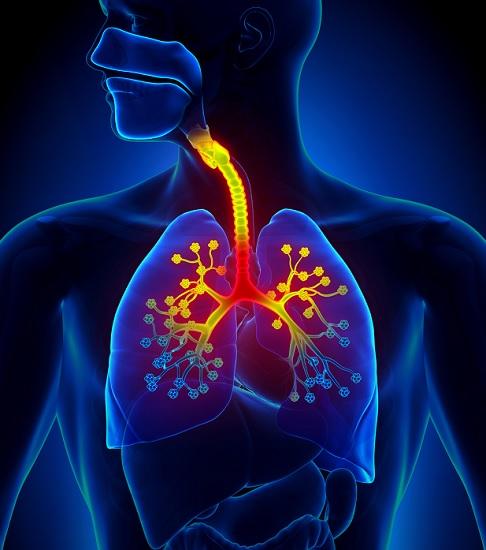 I detersivi causano danni ai polmoni? Lo studio
